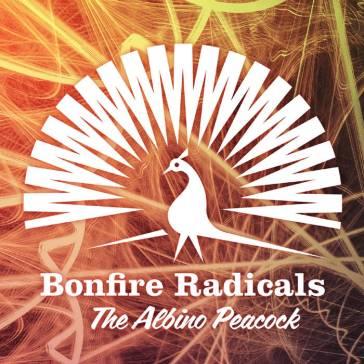 bonfire radicals.jpg